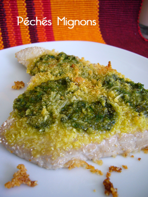Thon, Pesto, Parmesan, Pécorino, Rapide, J.Andrieu,