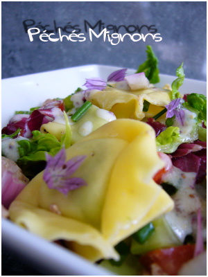 Entrée froide, Salade, Carmine, Sucrine, Thon, Herbes, Ciboulette, Concombre, Facile, Rapide, Légère, Yaourt, Tortellini, Moutarde ancienne,