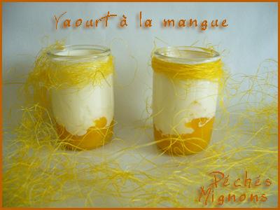 Yaourt, Yaourtière, Mangue, Lait, Facile,
