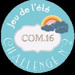 macaron-jeu-ete-2014-challenge-2