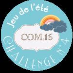 macaron-jeu-ete-2014-challenge-4