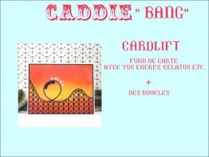 caddie16