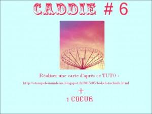 caddie22