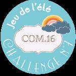macaron-jeu-ete-2014-challenge-7-317x300